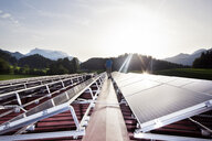 Austria, Tyrol, Koessen, back view of worker walking on solar plant in the evening - CVF00537