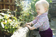 Baby girl leaning on wall looking at plants - CUF10238