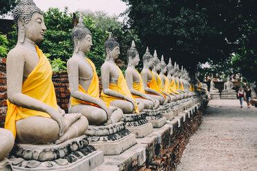 Thailand, Bangkok, Ayutthaya, Buddha statues in a row in Wat Yai Chai Mongkhon - GEMF01992