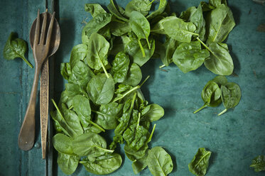Spinach leaves and salad cutlery on green background - ASF06183