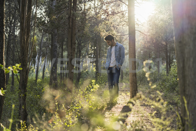Young man standing in forest, against the sun - AFVF00473