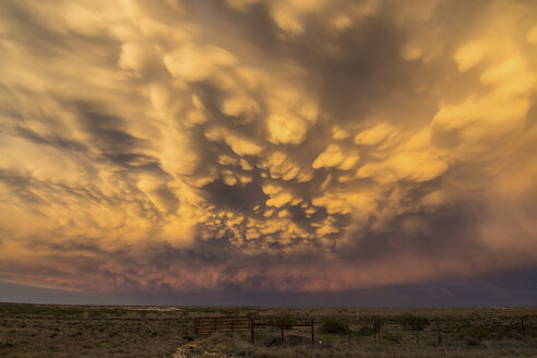 Beautiful display of mammatus clouds over New Mexico desert landscape, USA - CUF11685