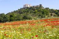 Santuari de Sant Salvador above poppy field, Majorca, Spain - CUF11715