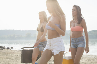 Group of friends enjoying beach party - ISF02274