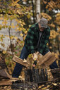 Mature man splitting logs in autumn forest, Upstate New York, USA - ISF02399