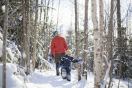 Man and son looking up while walking through snow covered forest - ISF03079