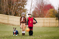 Portrait of boy, twin sister and boston terrier wearing halloween costumes in garden - ISF03817