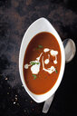 Bowl of tomato cream soup garnished with cream and parsley - CSF29190