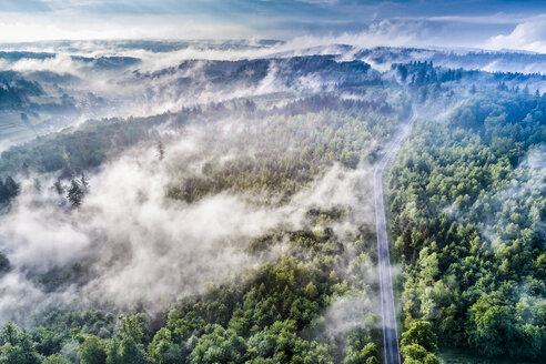 Germany, Baden-Wuerttemberg, Swabian Alb, Aerial view of Schurwald, morning fog - STSF01564
