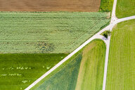 Germany, Baden-Wuerttemberg, Schurwald, Aerial view of fields in spring - STSF01573