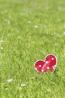 Home-made heart on meadow - CMF00811