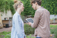 Couple in garden using digital tablet - ISF04661