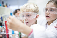 Pupils in science class experimenting with liquids in test tubes - WESTF24239