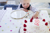 Female toddler reaching for birthday cake raspberries at table - CUF13296