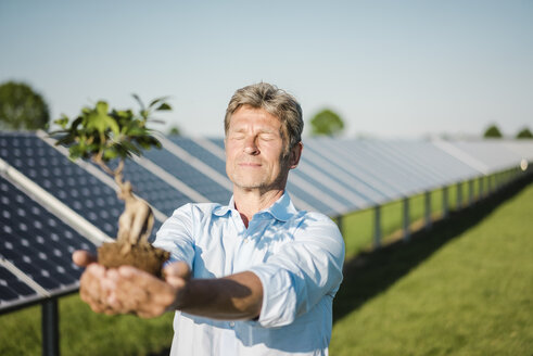 Mature man holding privet, solar plant - MOEF01167