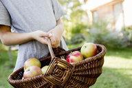 Girl holding basket of apples - CUF13816