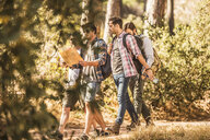 Four male hikers reading map whilst hiking in forest, Deer Park, Cape Town, South Africa - CUF17109