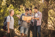 Four male hikers map reading in forest, Deer Park, Cape Town, South Africa - CUF17112