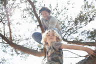 Father and son climbing tree - CUF17301