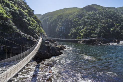 Africa, South Africa, East Cape, Tsitsikamma National Park, Storms River Mouth, suspension bridge - WEF00443