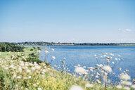 Germany, Ruegen, Middelhagen, Moenchgut, coastal landscape - MJF02276