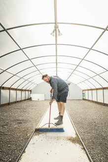 Scientist sweeping path in plant growth research centre poly tunnel - CUF17703