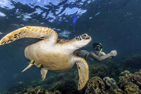 Young woman swimming with rare green sea turtle (Chelonia Mydas), Moalboal, Cebu, Philippines - CUF19280