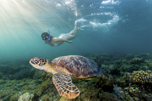 Young woman swimming with rare green sea turtle (Chelonia Mydas), Moalboal, Cebu, Philippines - CUF19286