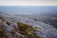 Trail runner ascending rocky steep hill, Kesankitunturi, Lapland, Finland - CUF20122