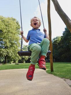 Portrait of screaming little boy on swing - MUF01546