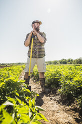 Bearded man leaning against hoe in vegetable patch looking away - CUF20291