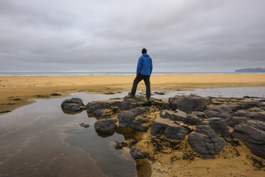 Man standing on rocks, looking at view, rear view, Westfjords, Iceland - CUF20686