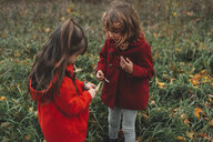 Two young sisters looking at wildflower pods in field - ISF07639