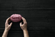 AI, Human hands touching brain - PDF01655