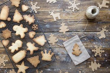 Various home-baked gingerbread cookies - SKCF00471
