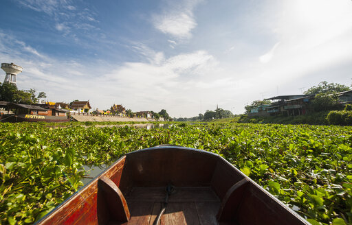 Boat on plant covered river, Ayutthaya, Thailand - CUF22055