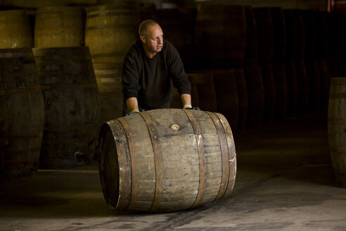 Worker rolling whisky cask in whisky distillery - CUF22340