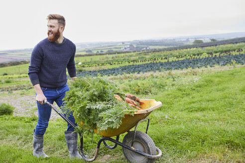 Man on farm pushing wheelbarrow of carrots - CUF22616