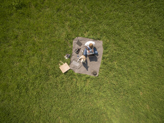 Bird's eye view of woman sitting on blanket on meadow with dog using laptop - ONF01119