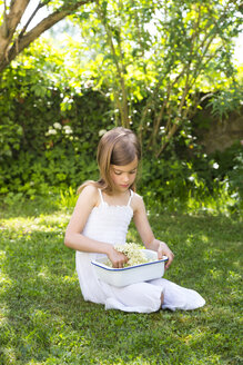 Little girl sitting on meadow in the garden with bowl of picked elderflowers - LVF07020