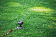 Lawn sprinkler on lawn - MMAF00367