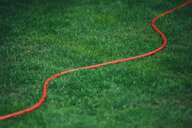 Red garden hose on green lawn - MMAF00370