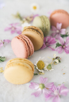 Macarons with blossoms - JPF00322
