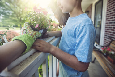 Hand wearing gardening glove handing plant to boy and girl - ISF08806