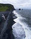 Seagull flying over beach against sky, Iceland - FSIF03143