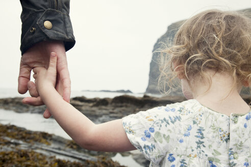 Cropped image of female toddler holding fathers hand whilst strolling on beach, Crackington Haven, Cornwall - CUF23285