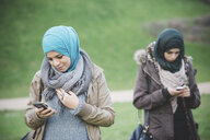 Two female friends in park reading texts on smartphones - CUF23631