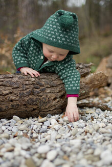 Baby girl leaning over tree trunk and touching pebbles - CUF24174