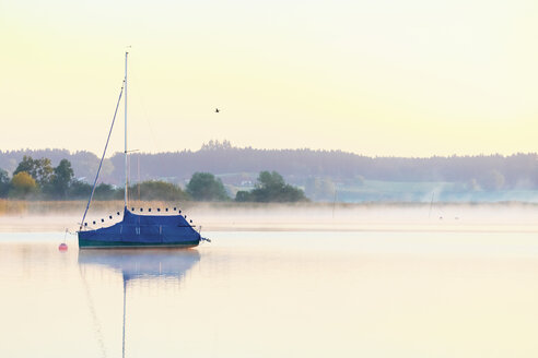 Germany, Bavaria, Chiemsee, covered sailing boat in the evening light - MMAF00379