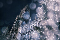 Low angle view of The New Rathaus (Town Hall) and Christmas tree at night, Munich, Germany - CUF28161